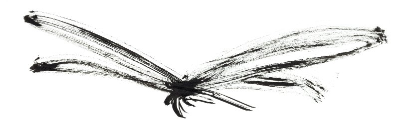 ink-drawing-dragonfly-inksect-insect