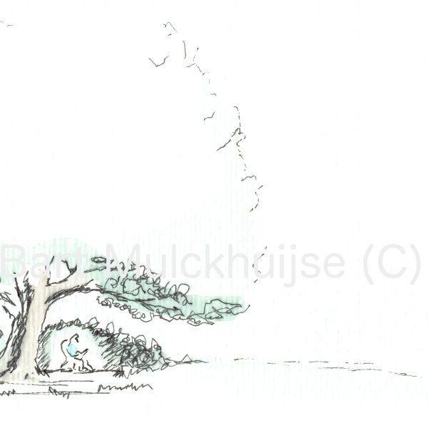 ink-aquarel-drawing-nut-tree